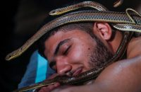 Egypt-snake-massage_176c300c26f_original-ratio